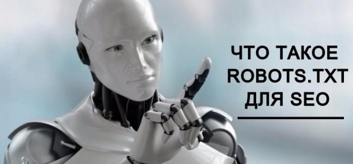 Что такое robots.txt для SEO
